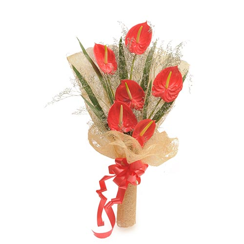 6 Red Anthurium packed in a jute packing