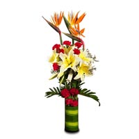 10 Red Carnation 4 White Lillies and 3 Orange BOP arranged in a desinger glass vase