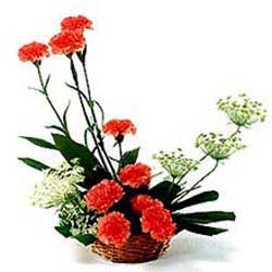 10 Red Carnations arranged in a small basket
