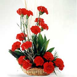 15 Red Carnations arranged in a cane basket