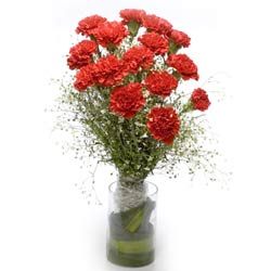 15 Red Carnations in a glass vase