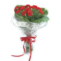 12 Red Carnation wrapped in a cellophane with ribbon