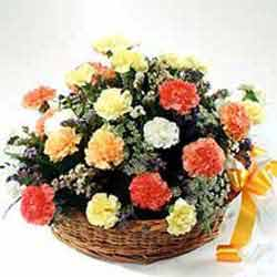 12 Mix Bright Carnations arranged in a large basket