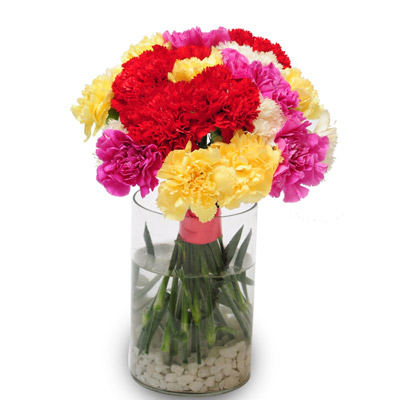 24 Mix Carnations arranged in a desinger glass vase