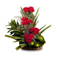 12 Red Carnations arranged cane basket