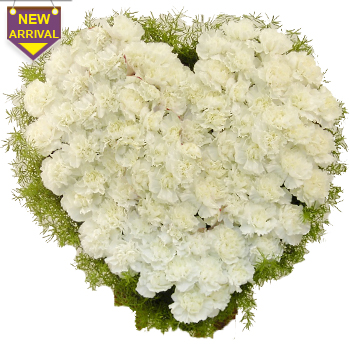 100 White Carnations arranged in a heart shape large basket