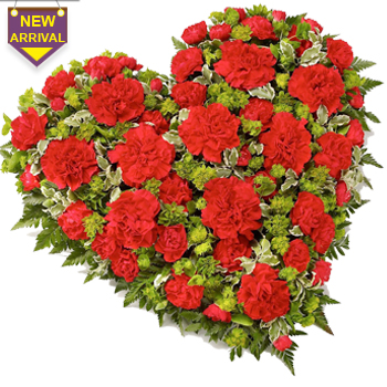 50 Red Carnations arranged in a heart shape large basket