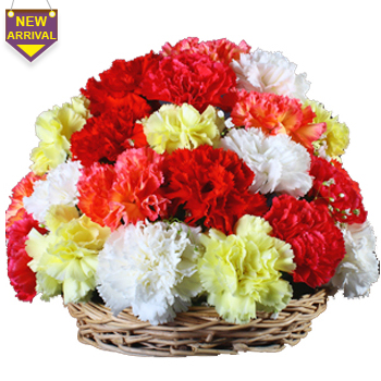 12 Mix Carnations nicely arranged in a basket
