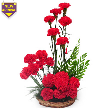 20 Red Carnations arranged in a basket