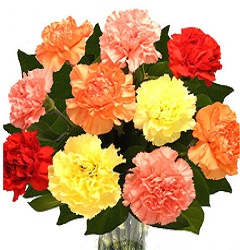 10 Mix Carnations in a glass vase