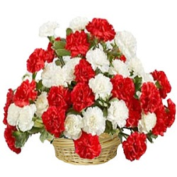 30 White and Red Carnations assembled in a large basket