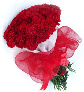 12 Red Carnation wrapped with net and colour paper