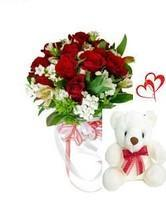 12 Red Carnations wrapped in a cellophane paper with 6inch Teddy bear