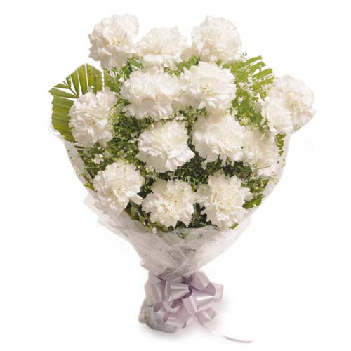 12 White Carnation packed in a cellophane paper