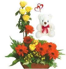 6 Red Gerberas and 6 Yellow roses arranged in a large basket