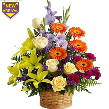 24 Mixed Flowers arranged in a large basket
