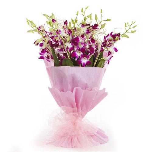 10 Purple Orchids packed in a colour paper