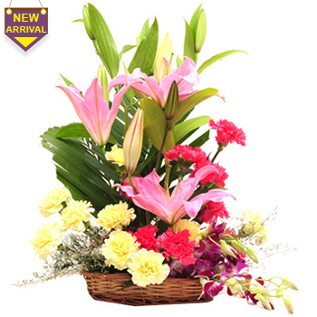 21 Mixed Flowers arranged in a large basket