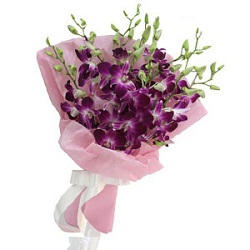 20 Purple Orchids with colour paper