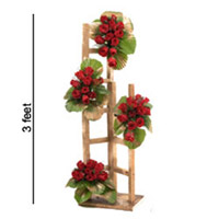 48 Red Roses arranged on wooden ladder