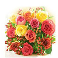 12 Mixed Roses packed in a cellophane paper