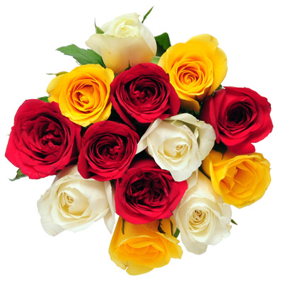 13 Mixed Roses bunch with ribbon