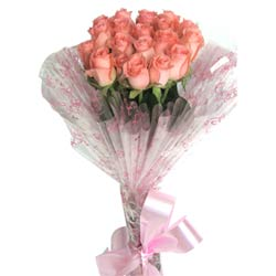 20 pink roses packed in a cellophane