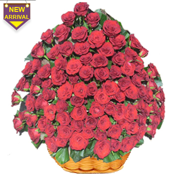 75 Red Roses arranged in a large basket