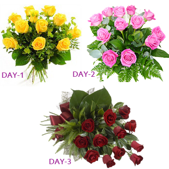 12 Red Roses bunch,12 Yellow Roses bunch,12 Pink Roses bunch