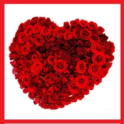 100 Red Roses arranged in a heart shape