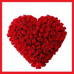 75 Red Roses arranged in a heart shape