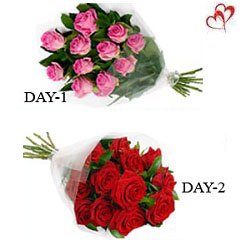 12 Red Roses and 12 Pink Roses bunches