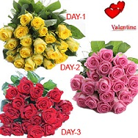 15 Red Roses,15 Yellow Roses,15 Pink Roses bunches