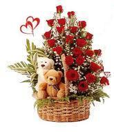 24 Red Roses arranged in a cane basket with 6inch teddy bear