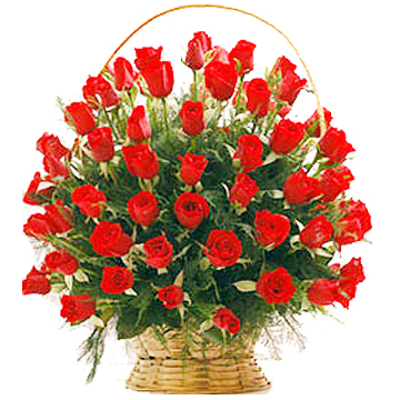 50 Red Roses arranged in a large basket